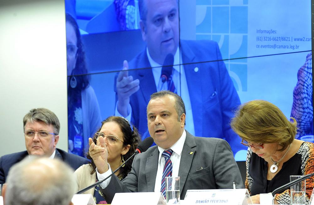 Rogério em Seminário do BNCC Foto_ Luis Macedo _ Camara dos Deputados
