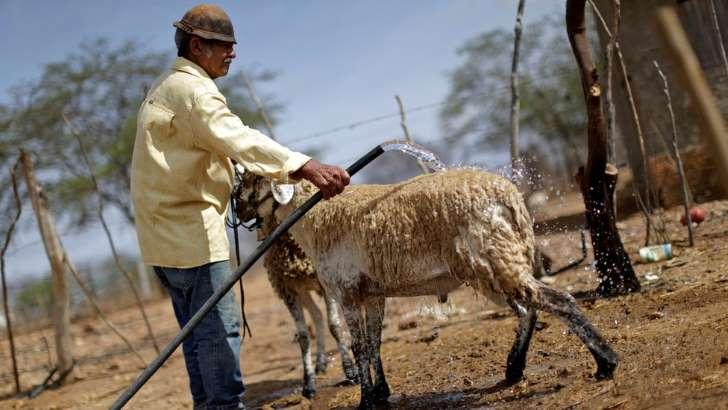 © Reuters Idade mínima e tempo de contribuição de trabalhadores rurais foram diminuídos