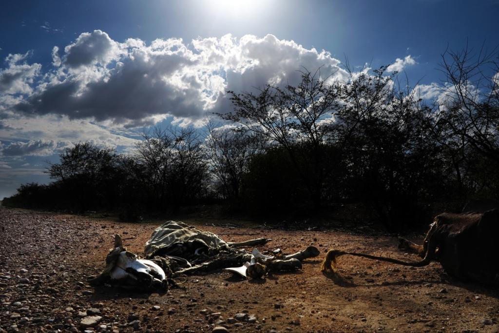 Cícero Oliveira - Atualmente, existem 18 cidades em colapso hídrico, fenômeno que acontece quando não há água suficiente nos mananciais para o auto-abastecimento
