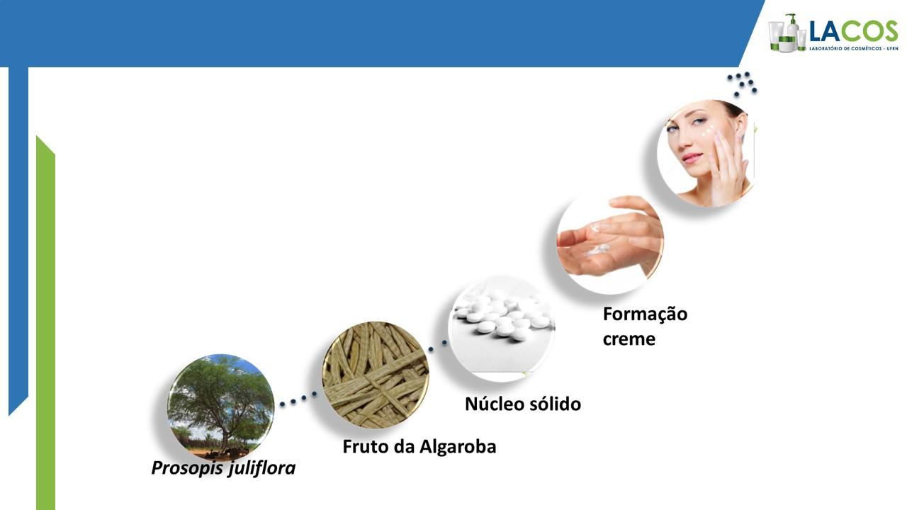 Divulgação: Pesquisa com Algaroba resultou em um creme com efeito hidratante para aplicar na pele, atuando na prevenção do envelhecimentos