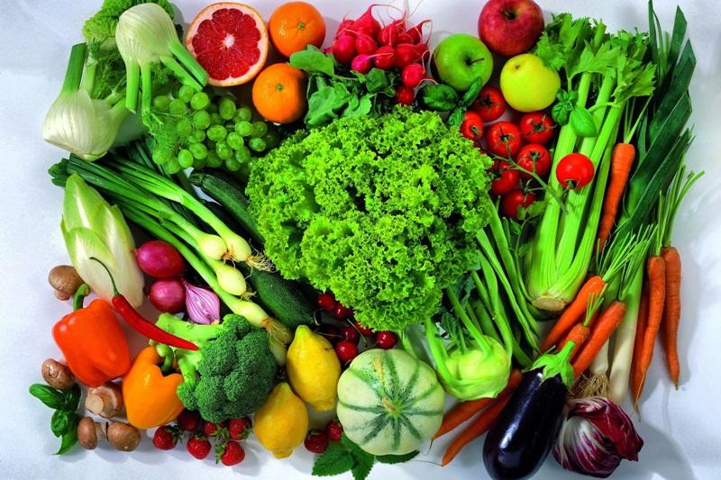 Alimentos  Reprodução